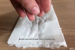 Sprinkle water until the paper towel is completely wet.